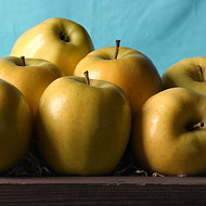 Golden supreme apples, apples, fruit, fresh