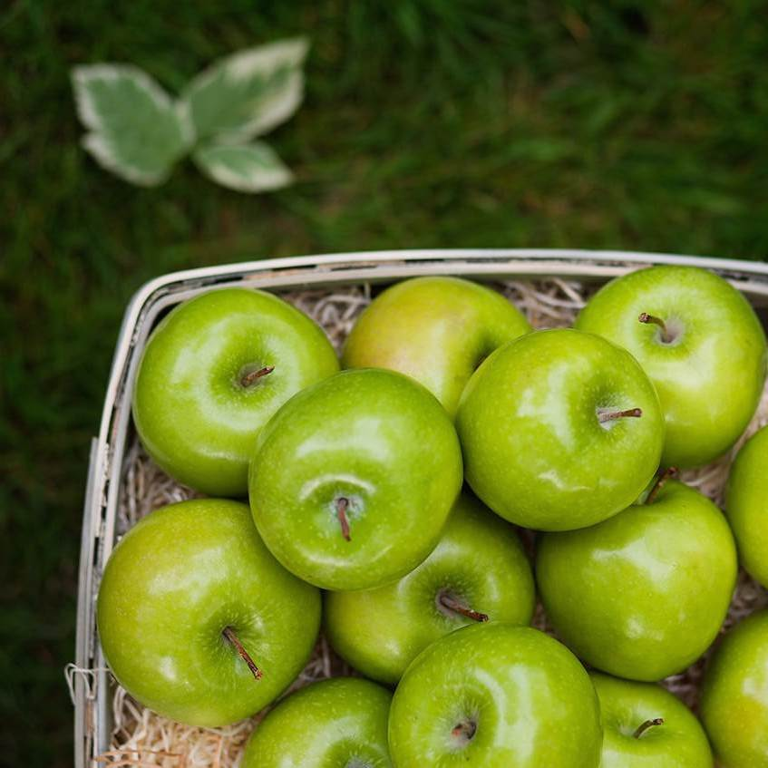 Granny Smith Apples from The Fruit Company