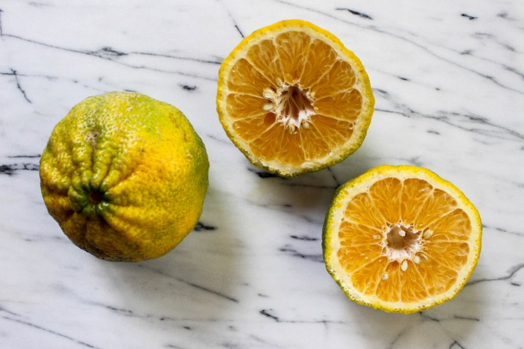 Ugli Fruit from The Fruit Company