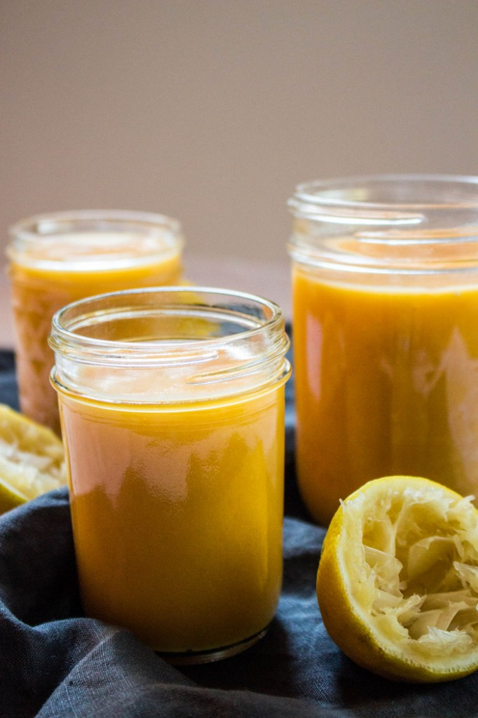 Papaya Curd Recipe on The Fruit Company blog