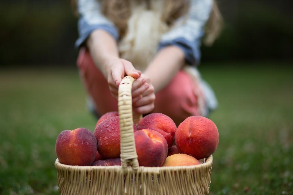 Sweet, Oregon Peaches