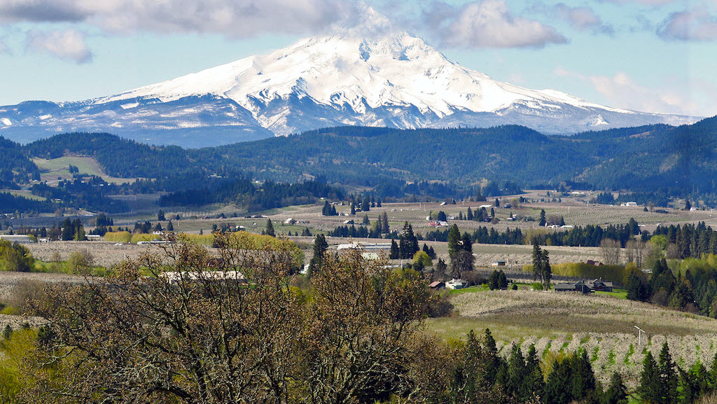 The springtime view of Mt. Hood from the Panorama Point lookout.