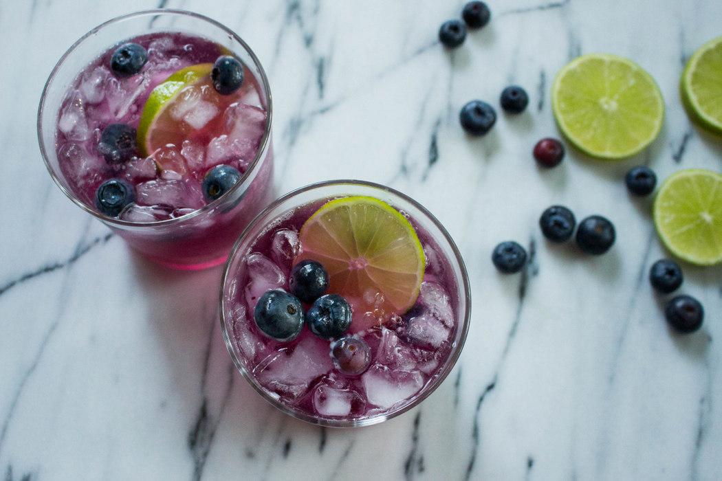 Refreshing Blueberry Spritzer Recipe on The Fruit Company Blog