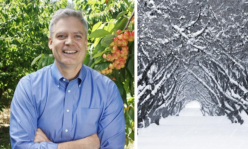 Scott Webster's Tips on Fruit Trees