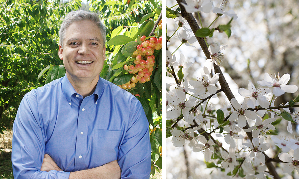 Scott's Tips: All About our Spring Bloom